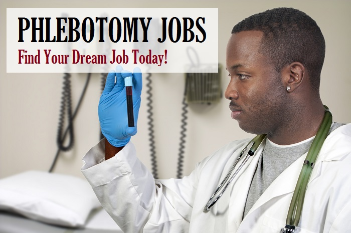 phlebotomy jobs search